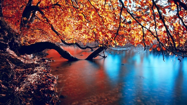hd-wallpapers-autumn-lake-full-desktop-1080p-1920x1080-wallpaper